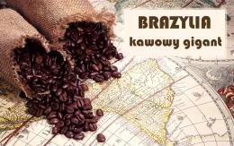 Brazylia. Kawowy gigant.