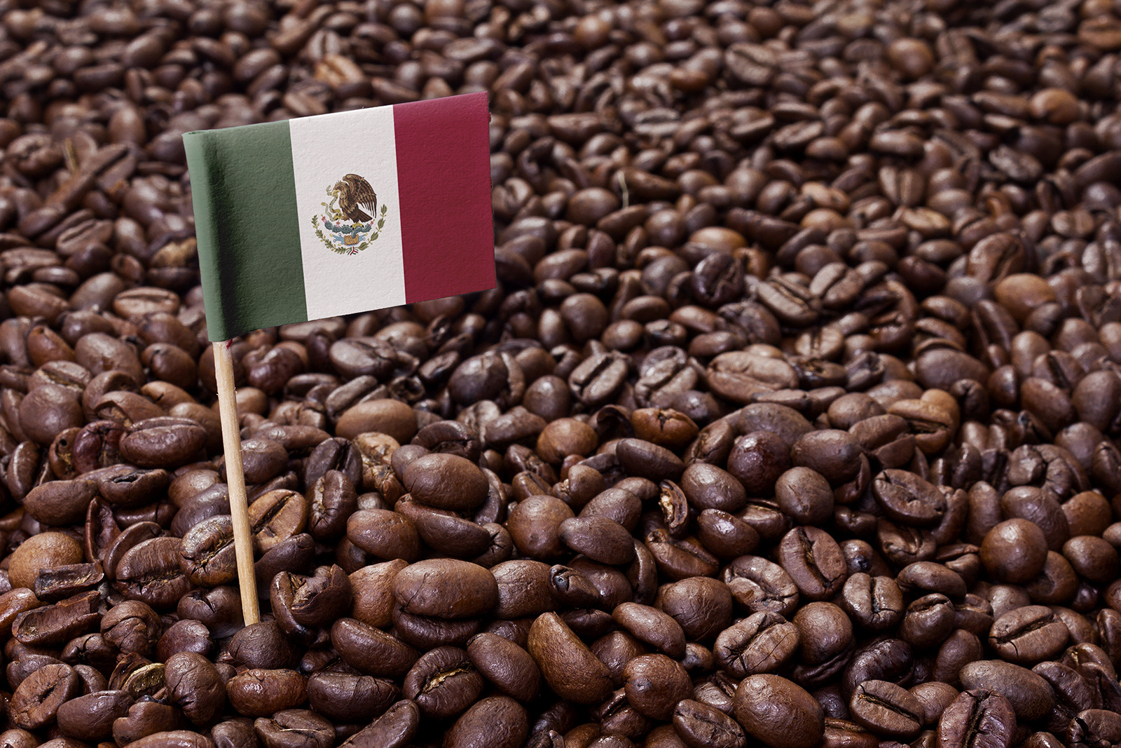 Kawa w Meksyku
