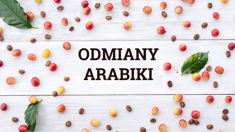 Odmiany arabiki – ze 120 warto znać najbardziej popularne