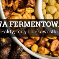 Kawa fermentowana