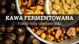 Kawa fermentowana – czego się po niej spodziewać?