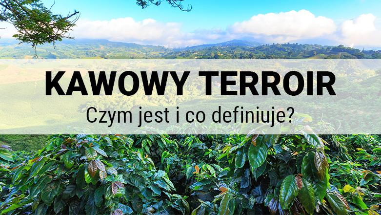 Czym jest i co definiuje kawowy terroir?